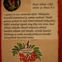 11.12 A-SAAL JÕULUSÄRAS